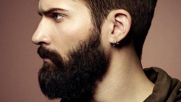 barba-verticale